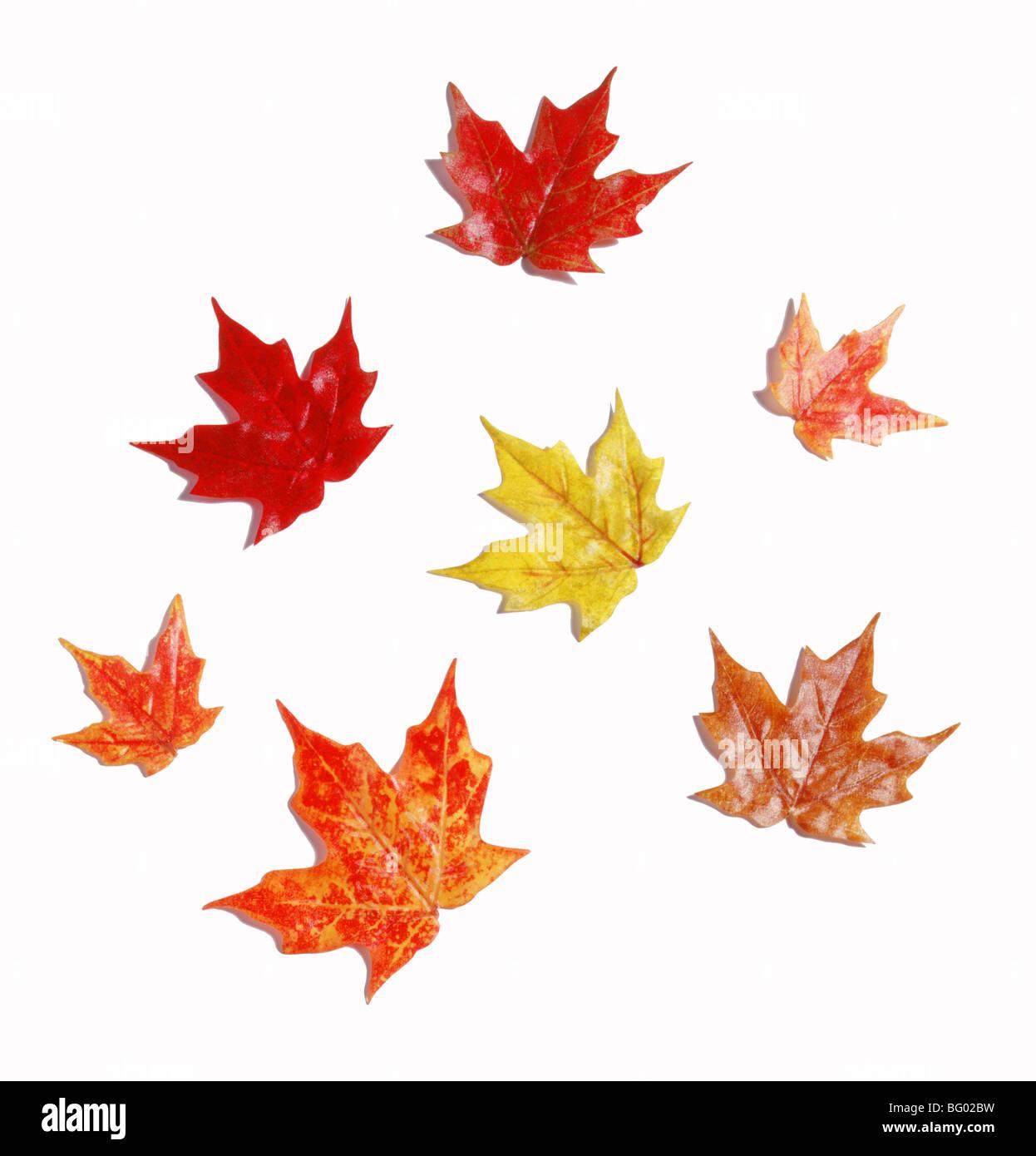 Gliederung der Stoff Herbstlaub Stockbild