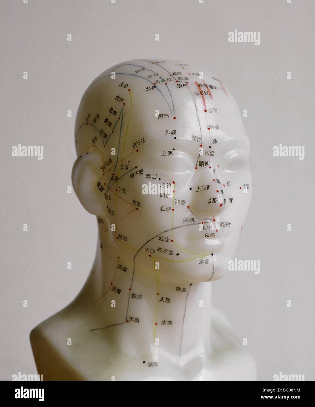 Akupunkturpunkte, chinesische Medizin Stockbild