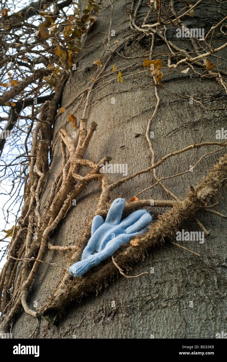 Verlorenen Handschuh auf Baumstamm gelegt Stockbild