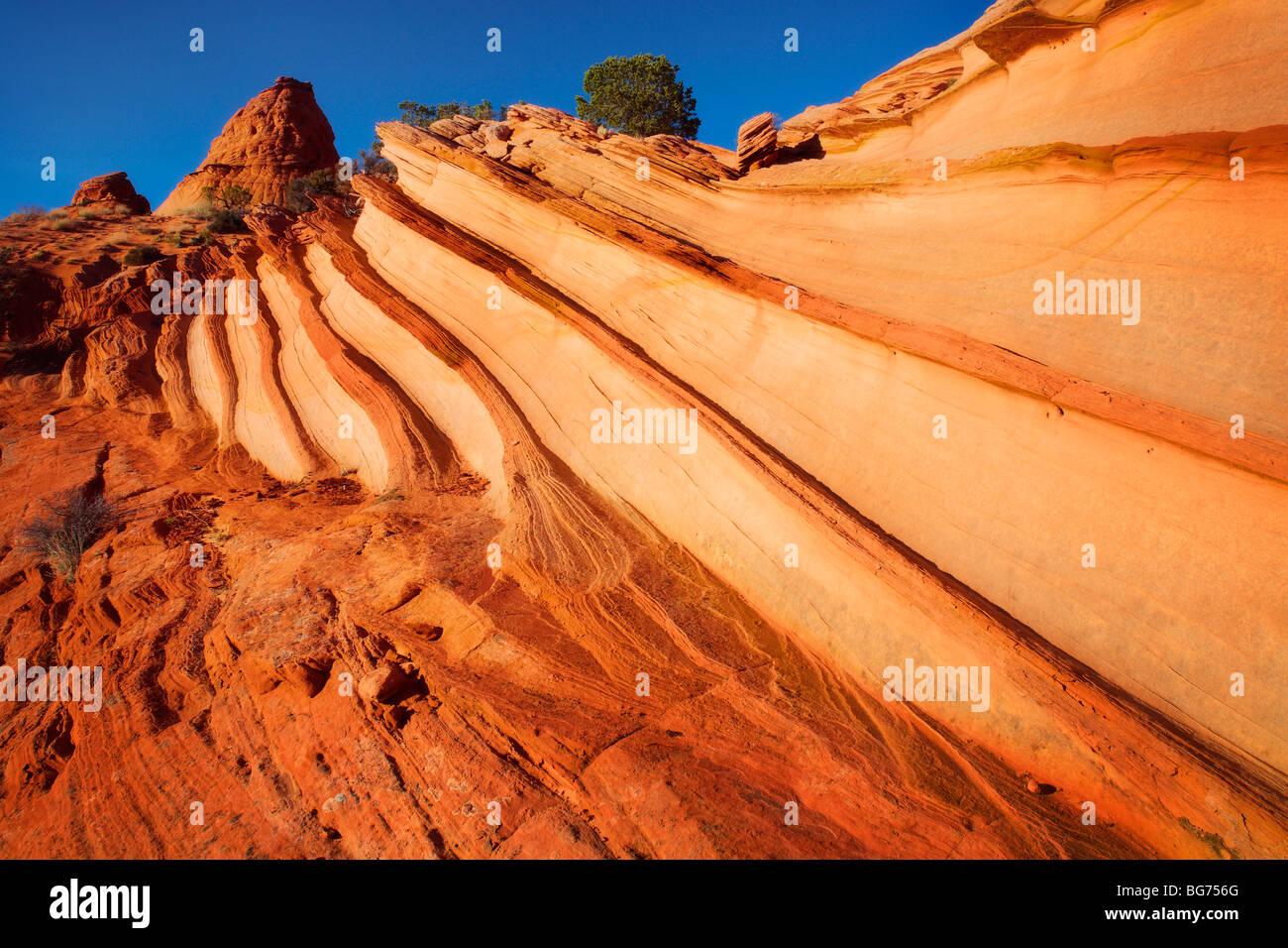 Gekerbten Sandstein im Vermilion Cliffs National Monument, Arizona Stockbild