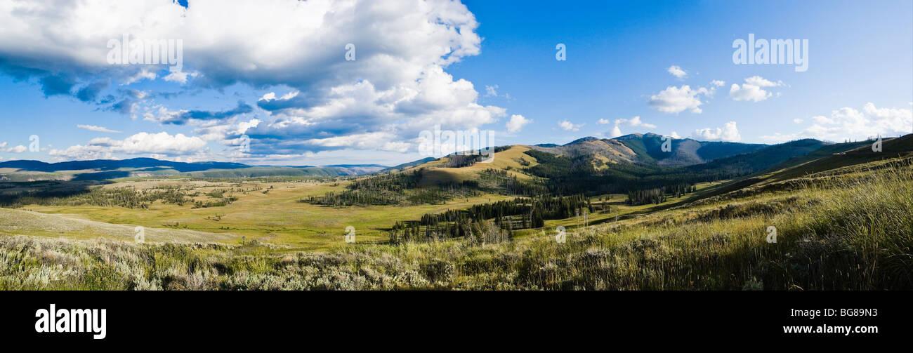 Mount Washburn und Antelope Creek Valley, im Yellowstone-Nationalpark, Wyoming, USA. Stockbild