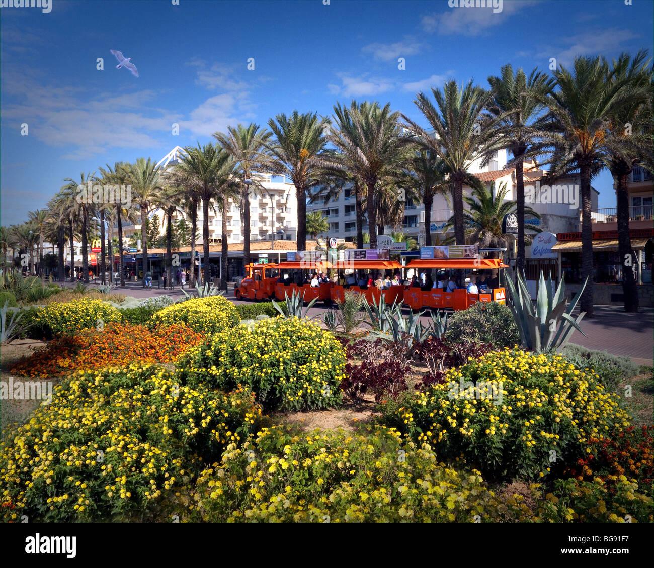 ES - MALLORCA: The Promenade an der Playa de Palma Stockbild