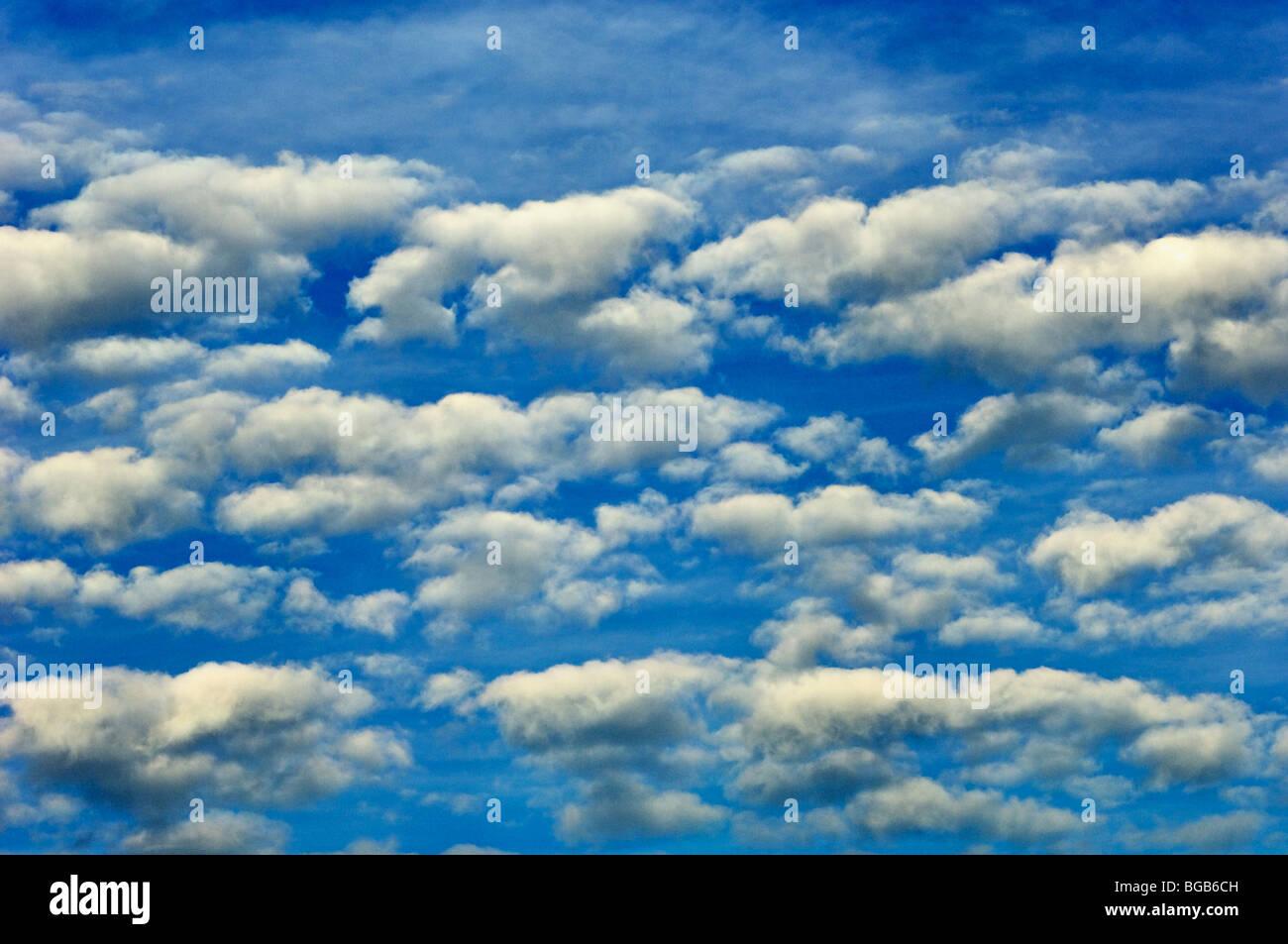 Weißen Cumulus-Wolken am blauen Himmel Stockbild