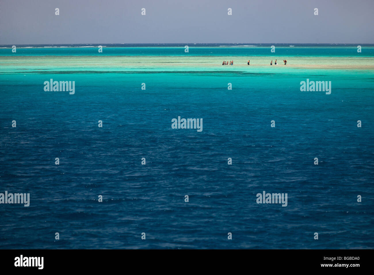 Afrika, Ägypten, Sharm el Sheik, Tiran Insel, Meer, Küste, Farben, Korallenriff, Schnorcheln, Wasser, Stockbild