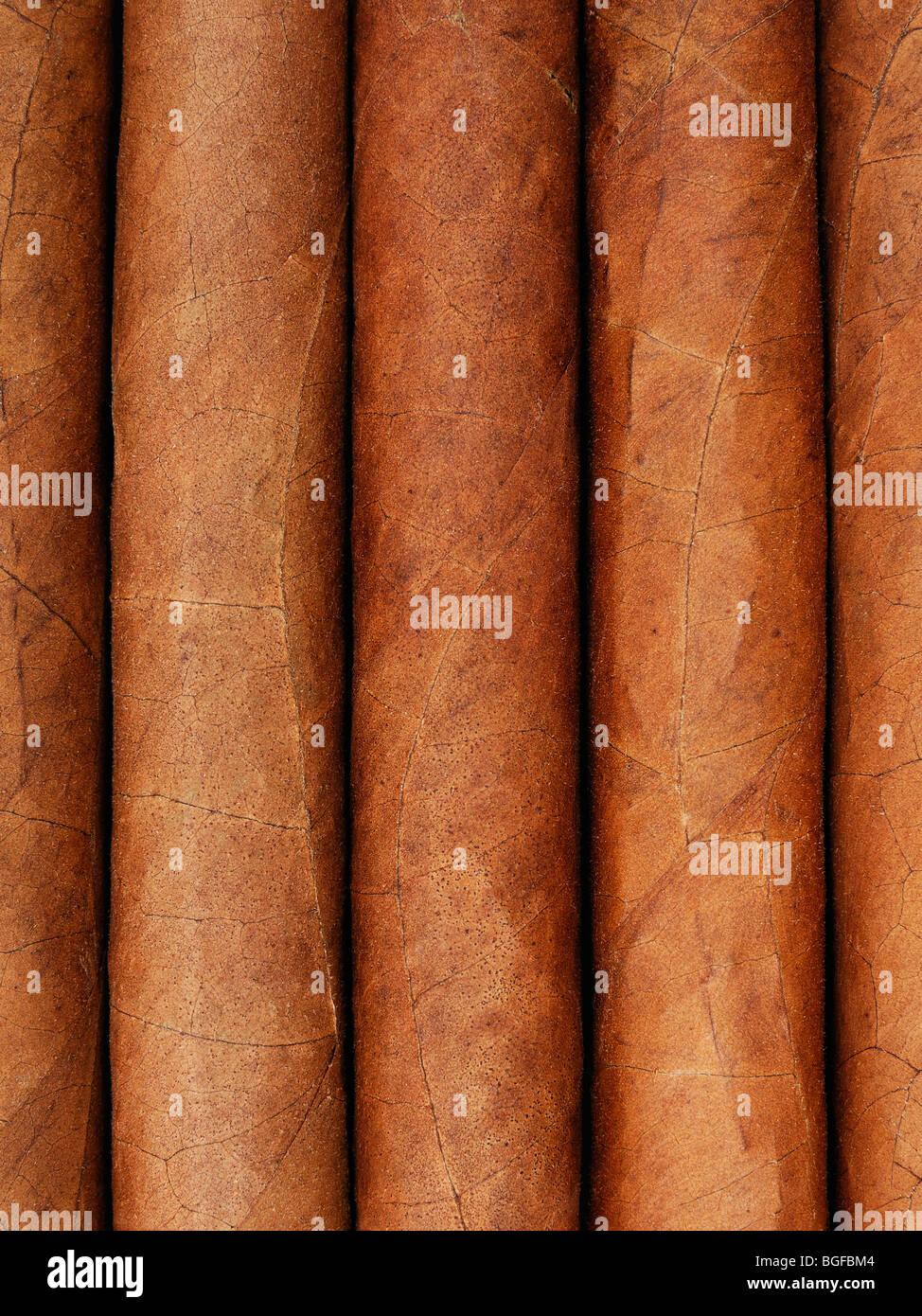 Zigarren, hautnah. Stockbild