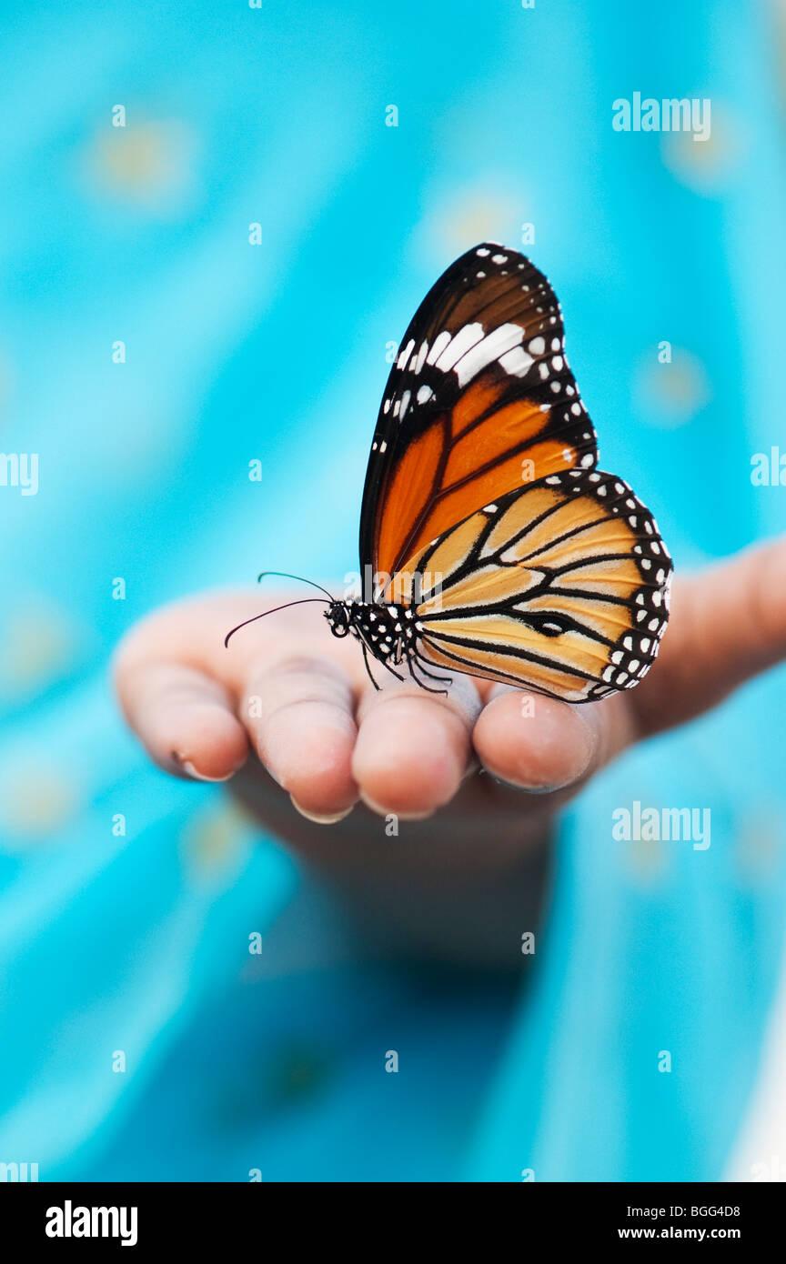 Gestreifte Tiger Butterfly (Gemeinsame Tiger Butterfly) auf der Hand eines indischen Mädchens Stockbild