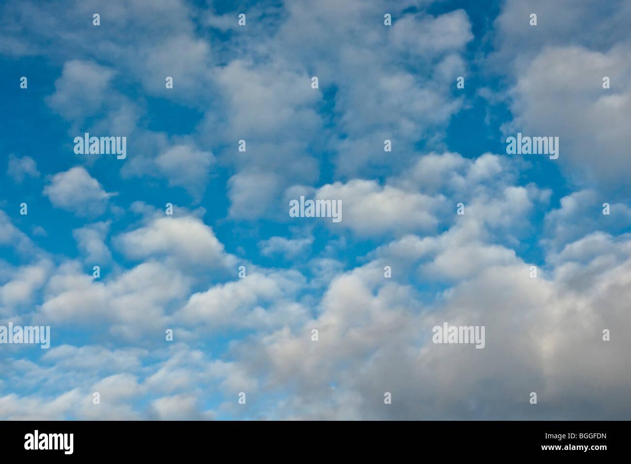 Sommerhimmel Stockbild