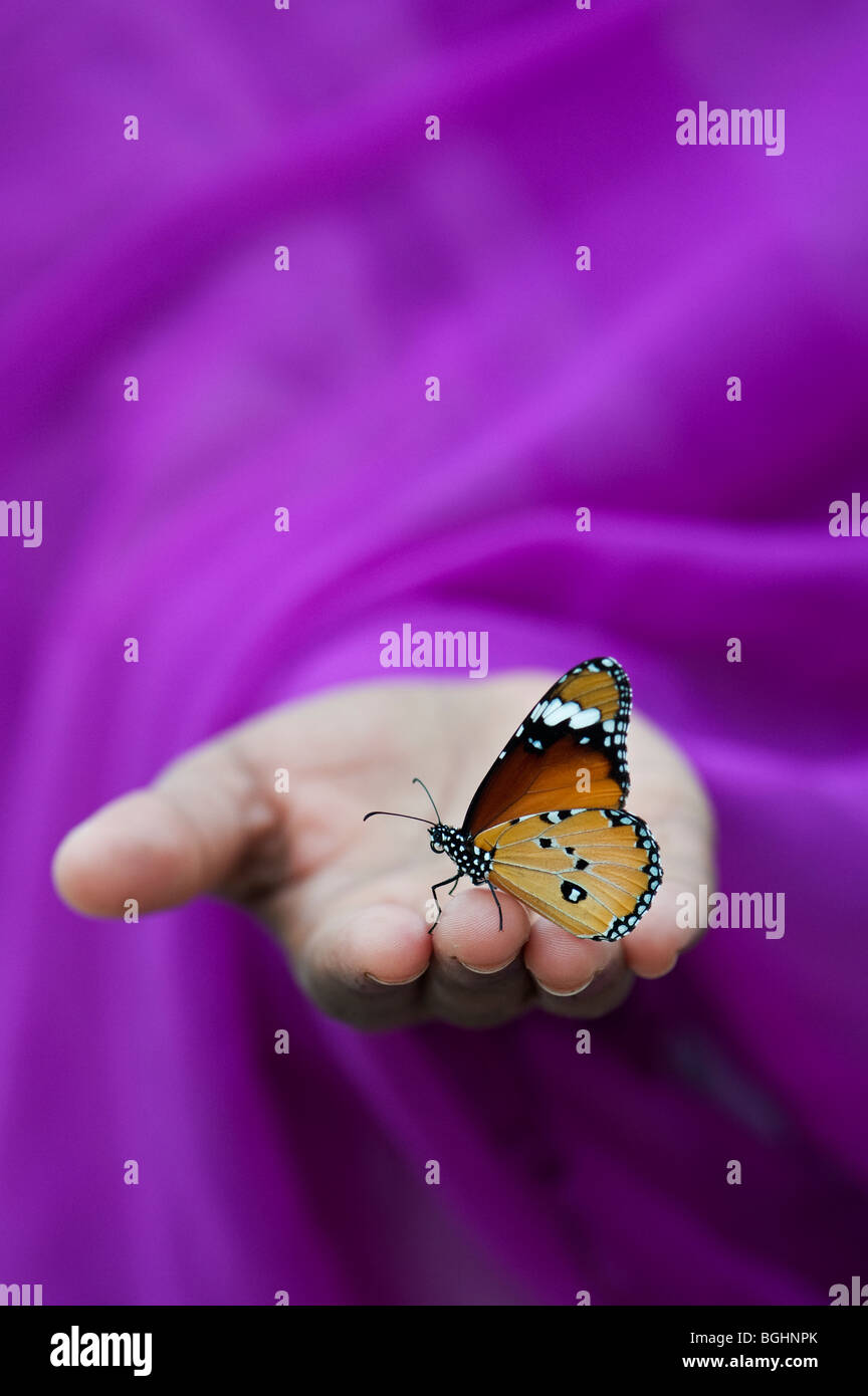 Danaus chrysippus. Plain Tiger Schmetterling auf indische Mädchen Hand. Indien Stockbild