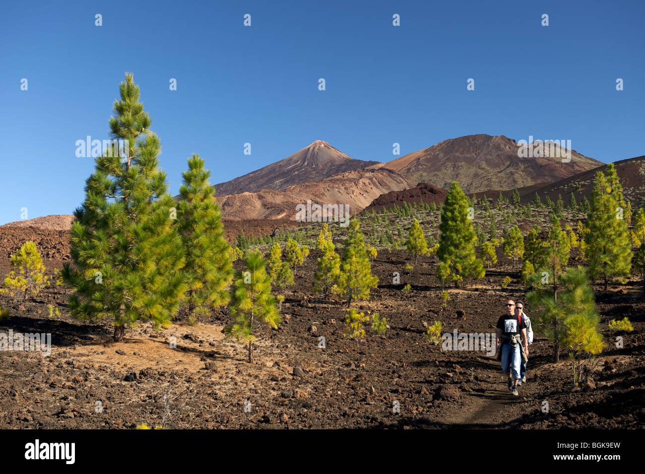 Spanien Teneriffa Kanarische Inseln Mount Teide höchsten Atlantik wandern Sonne Reisen Urlaub Meer Natur blauen Stockbild