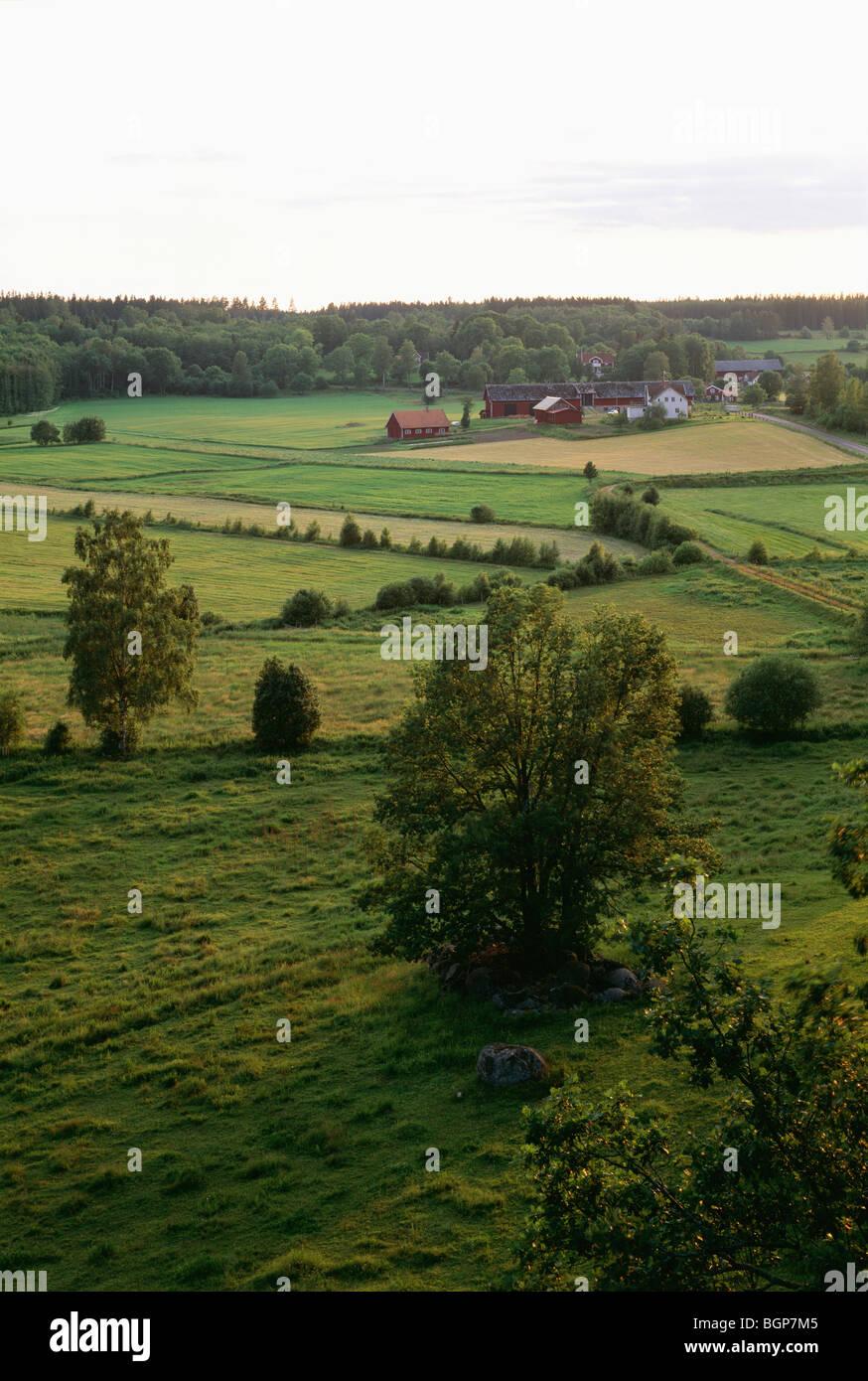 Landwirtschaftlicher Bezirk, Småland, Schweden. Stockbild