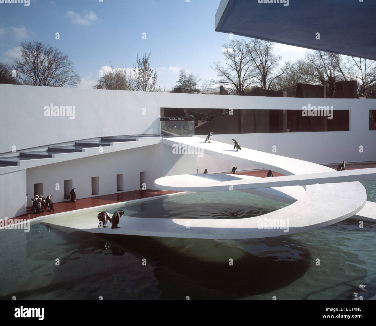 Snowmass Village Aspen Fiona Cowan Wohn Exterieur Design Dach Uber