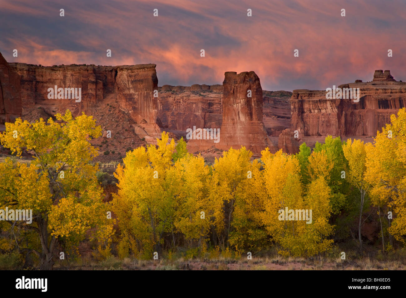 Courthouse Wash, Arches-Nationalpark, in der Nähe von Moab, Utah. Stockbild