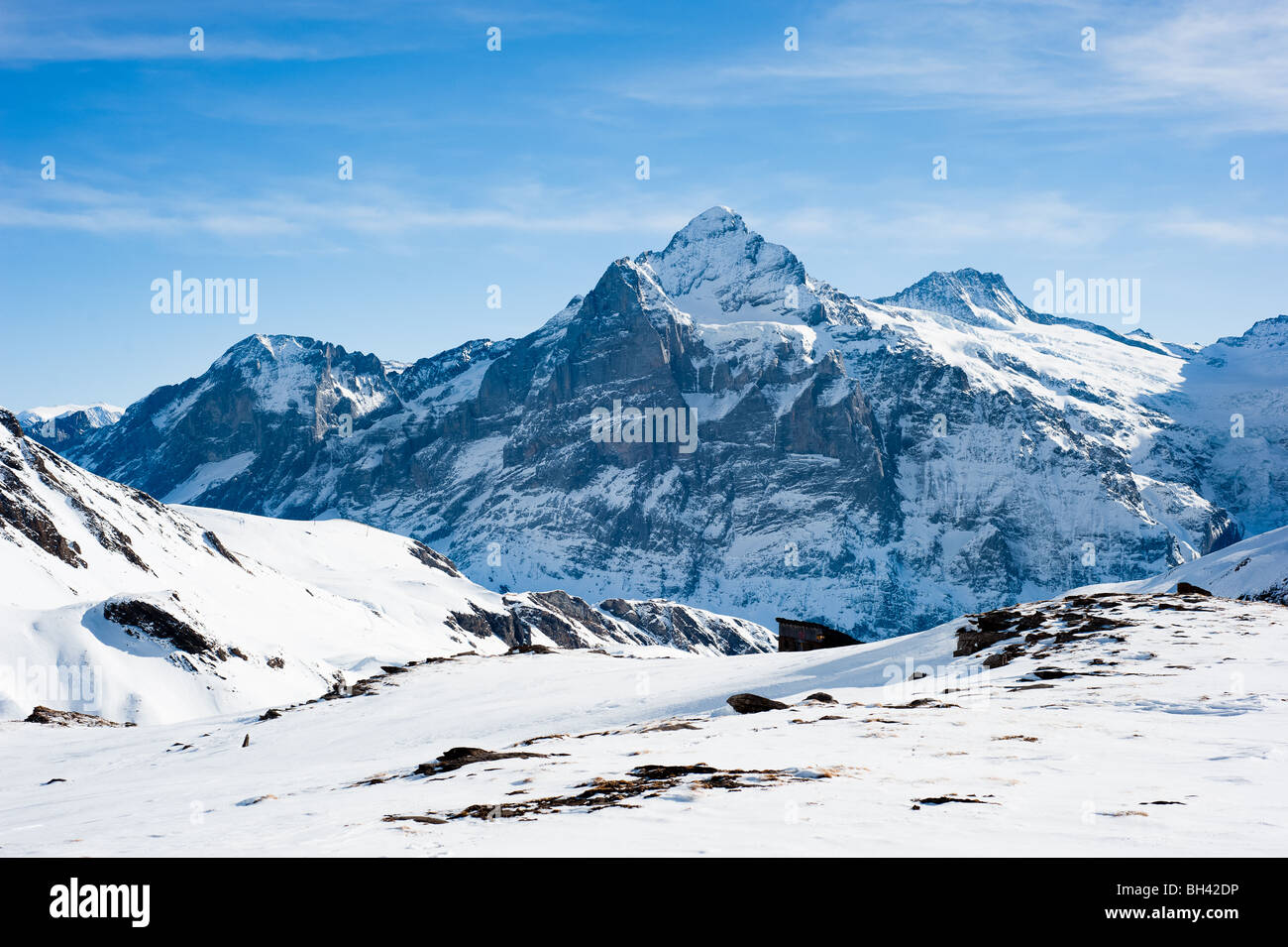 Wetterhorn (3692m) Gipfel, Aussicht vom Faulhorn, Grindelwald, Schweiz Stockbild