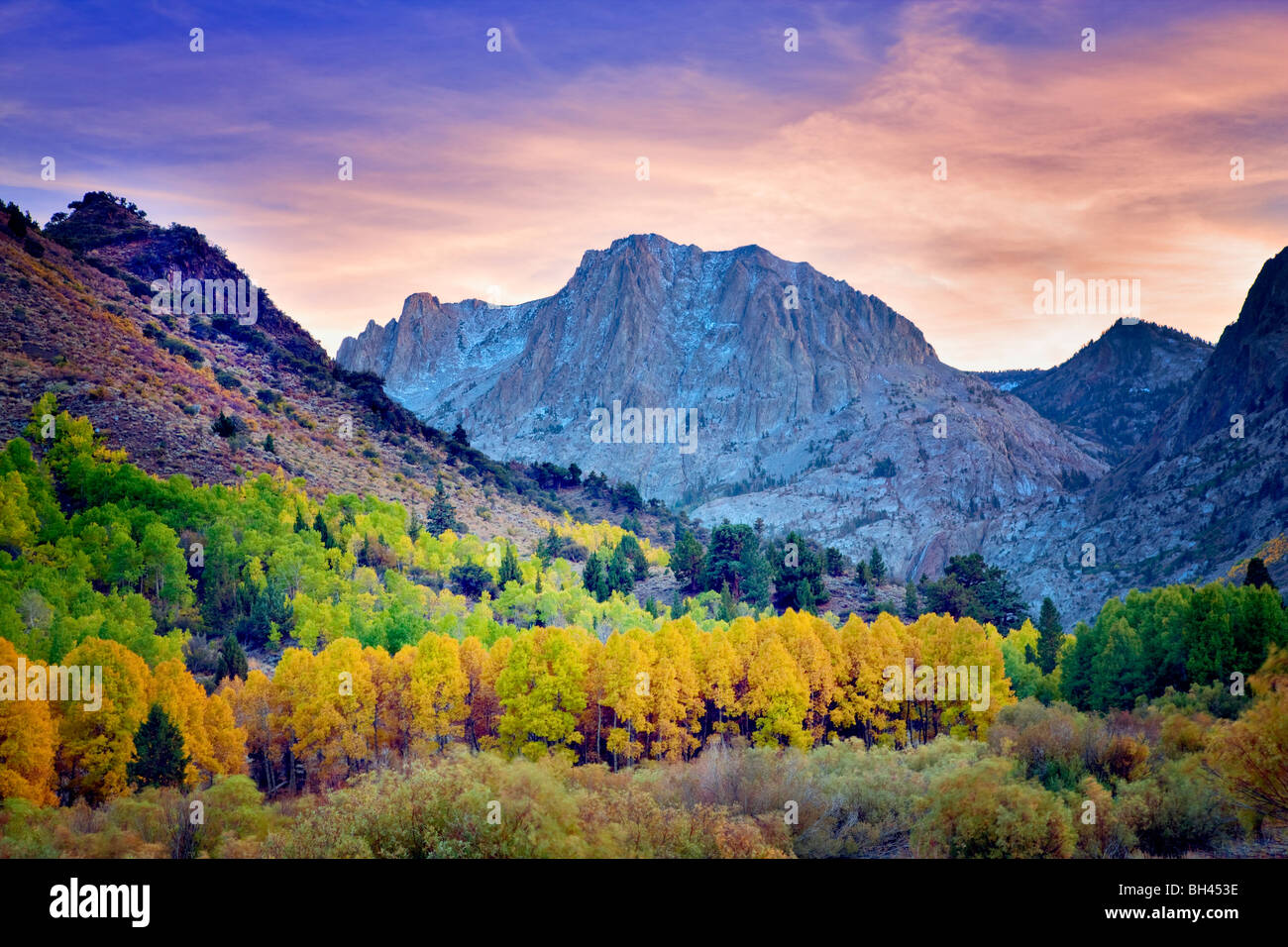 Carson Peak und Herbst farbige Espen. California Stockbild