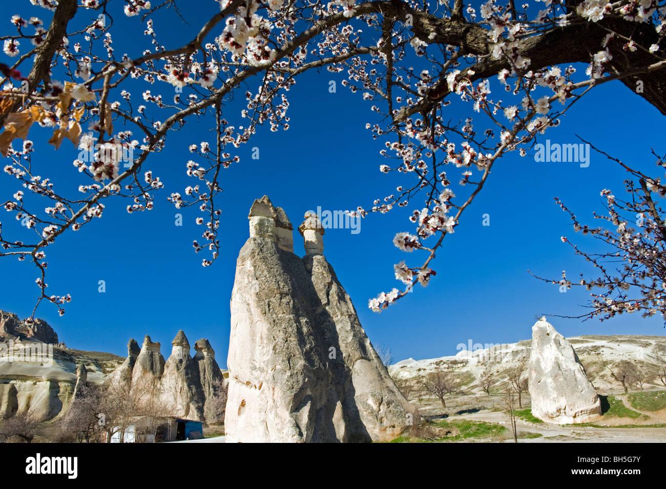Cappadocia Fairy Chimneys Türkei Stockbild