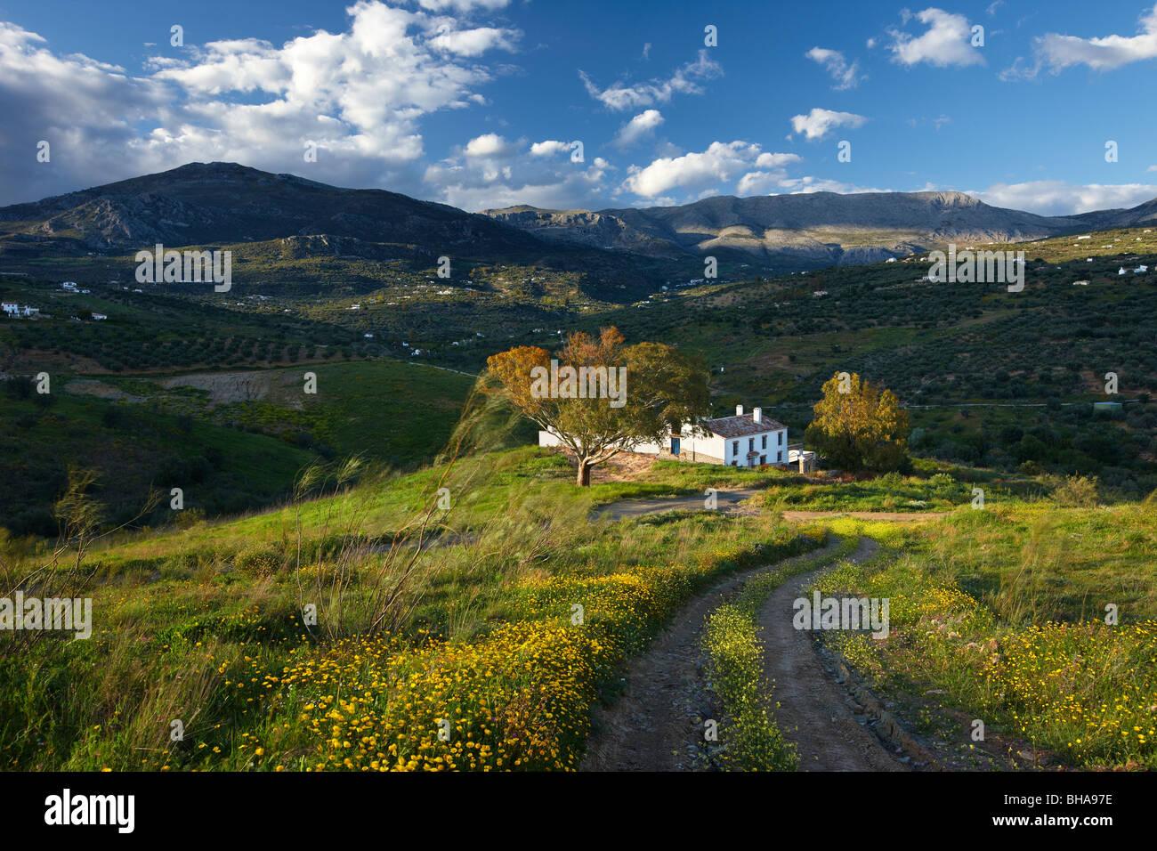 ein Haus auf dem Campo Nr. Los Molinos, Periana, Andalusien, Spanien Stockbild