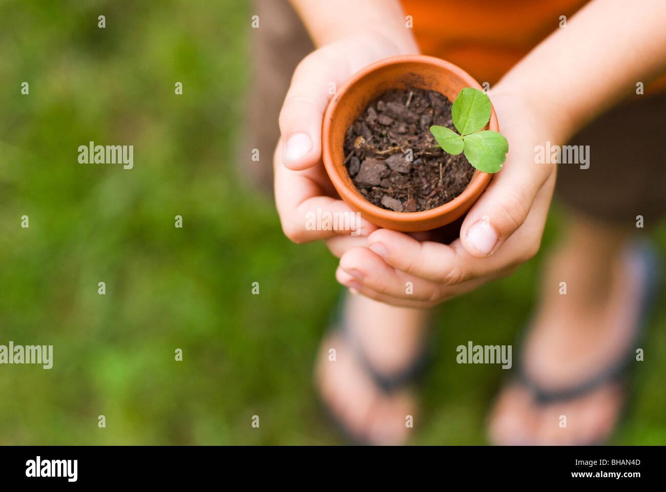 Boy Holding Topfpflanzen Pflanze Stockbild