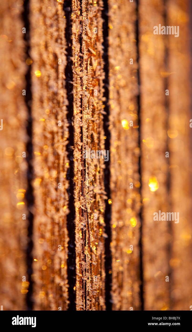 Frostigen Wandtafeln an kalten Wintertag Stockfoto