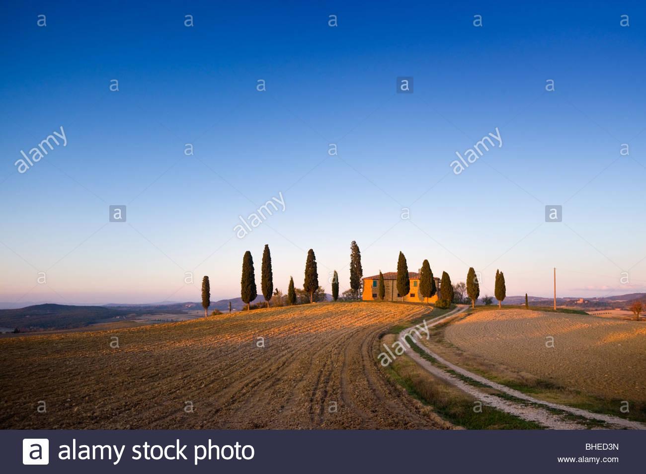 Bauernhaus in der Nähe von Pienza, Val D'Orcia, Toskana, Italien. Stockbild