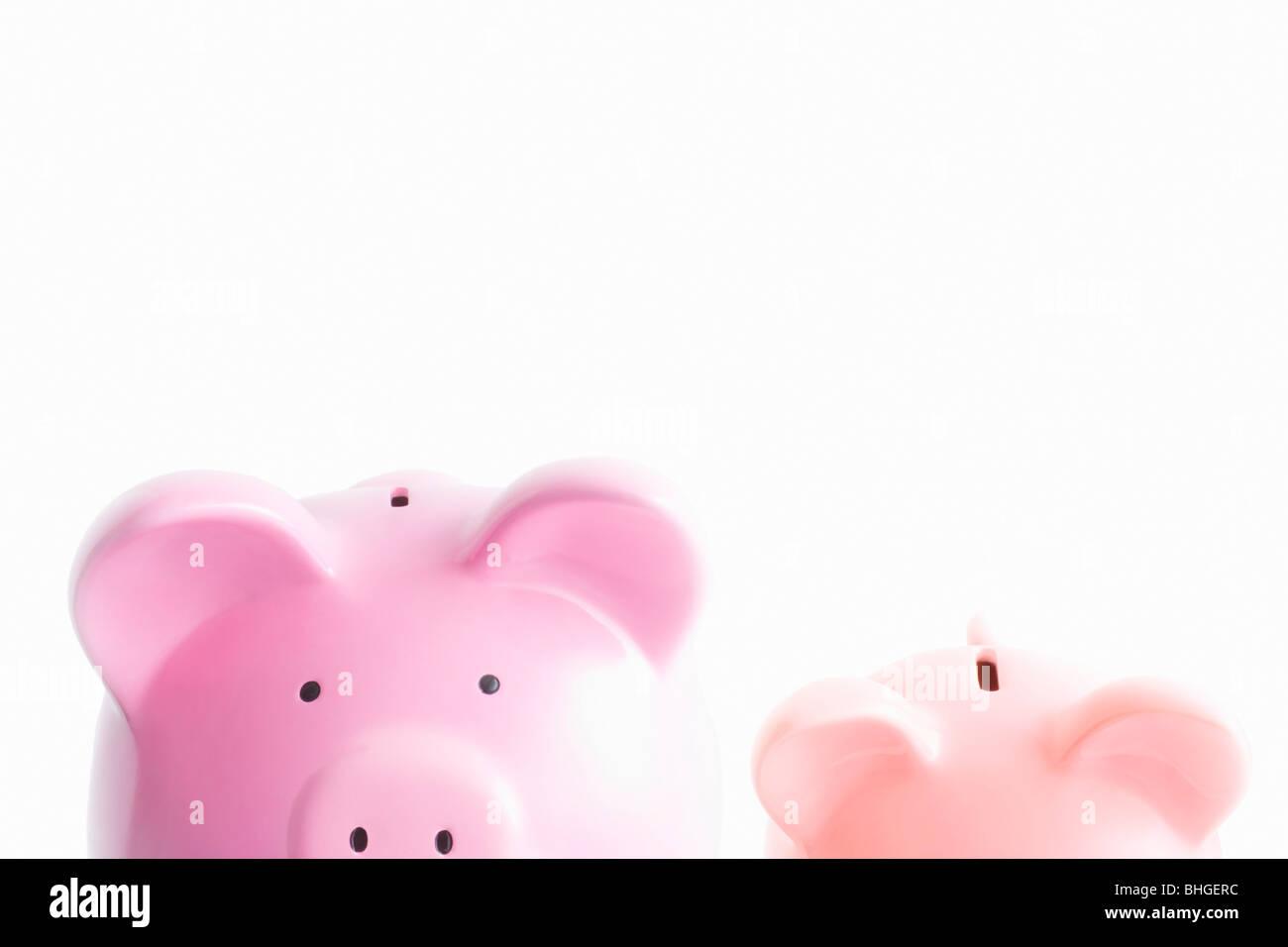 Sparschweine auf weiß Stockfoto