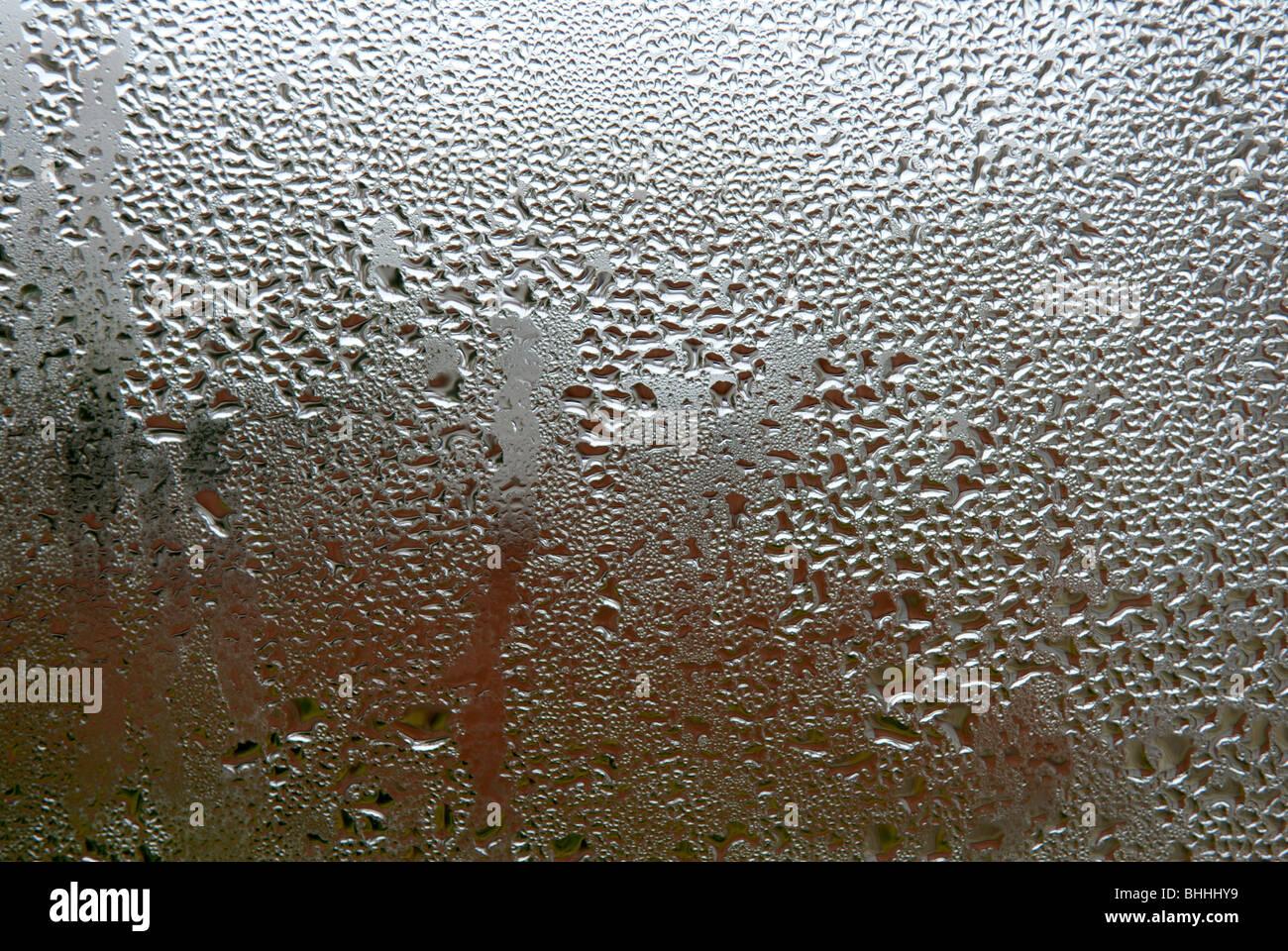 Kondensation-Fenster. Stockbild