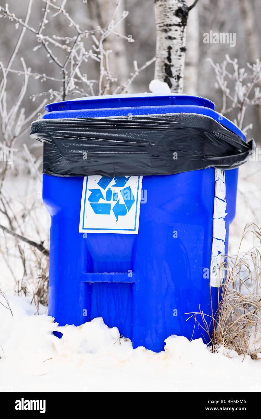 Blue box Papierkorb in einem städtischen Wald. Stockfoto