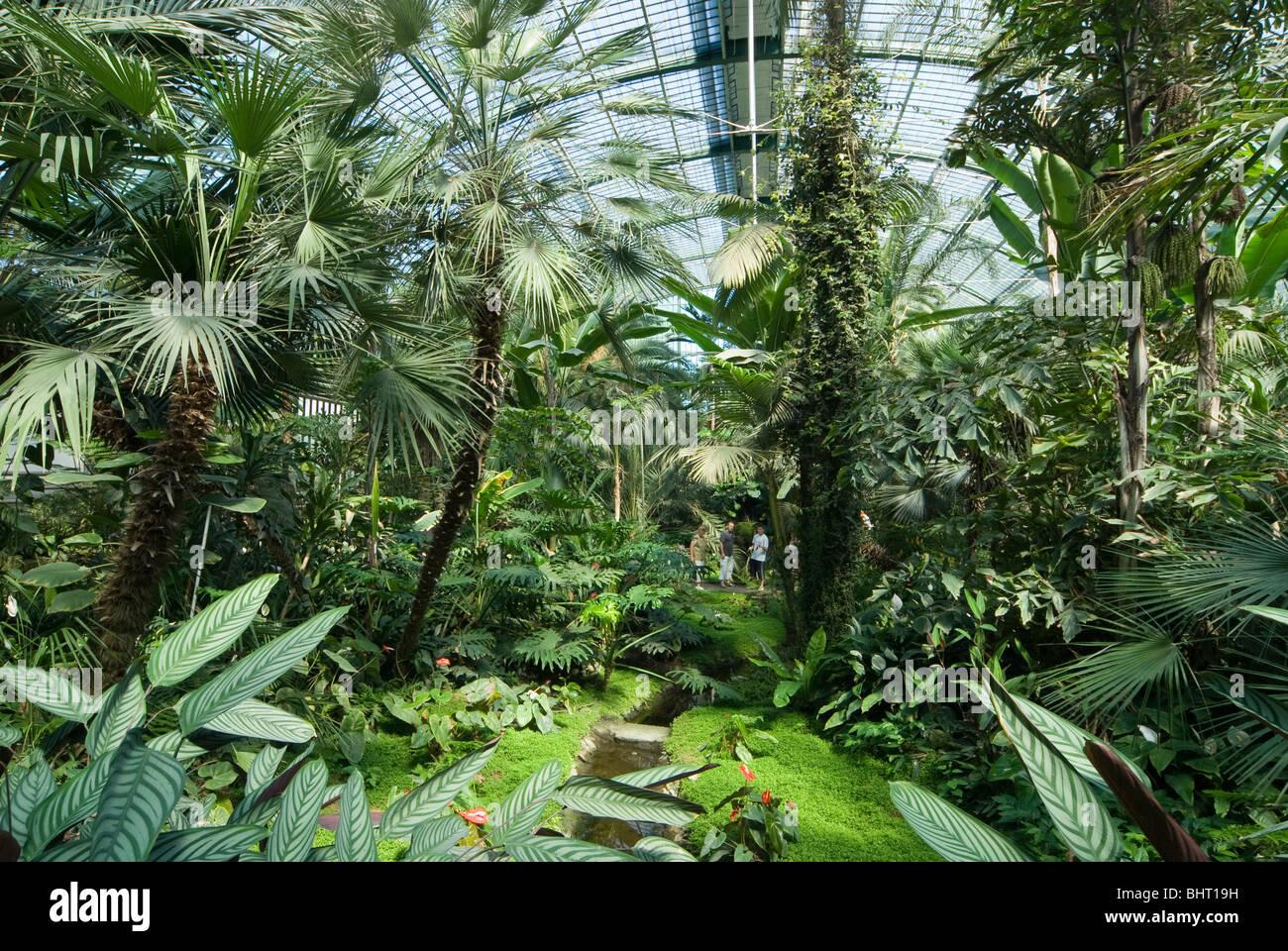frankfurt botanical garden stockfotos frankfurt botanical garden bilder alamy. Black Bedroom Furniture Sets. Home Design Ideas