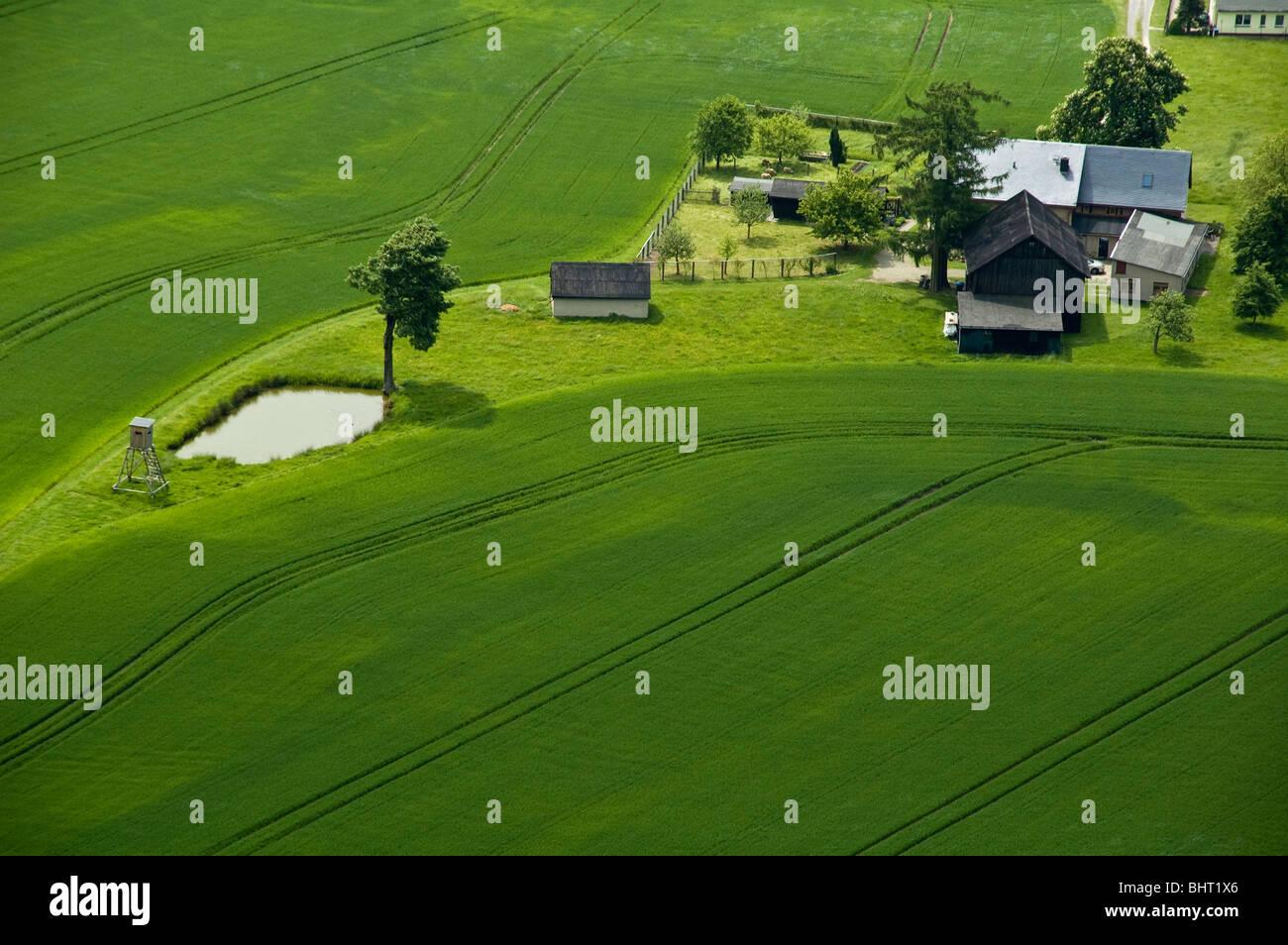 sehen Sie sich auf Bauernhof in grünen Feldern, Sachsen, Deutschland Stockbild