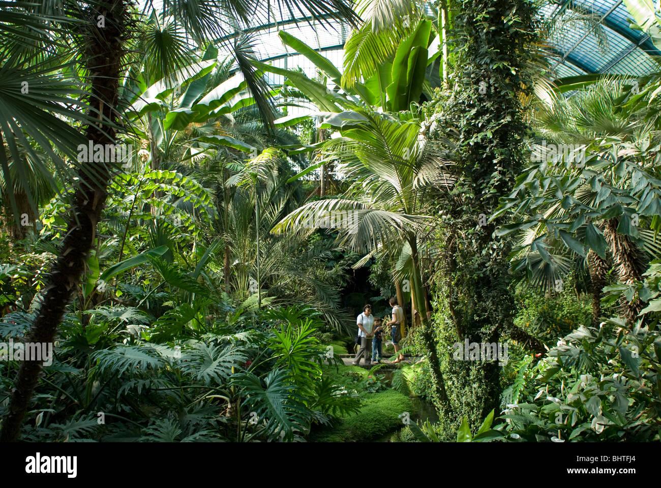 palmengarten botanischer garten in frankfurt tropicarium und skyline von frankfurt am main. Black Bedroom Furniture Sets. Home Design Ideas