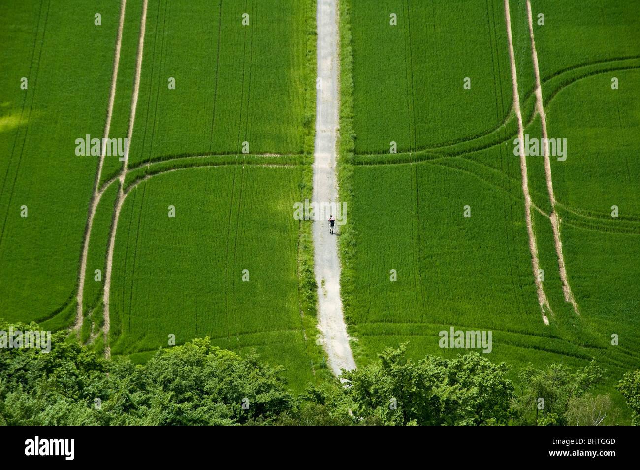 sehen Sie auf der grünen Wiese mit Tracks, Walker, Sachsen, Deutschland Stockbild