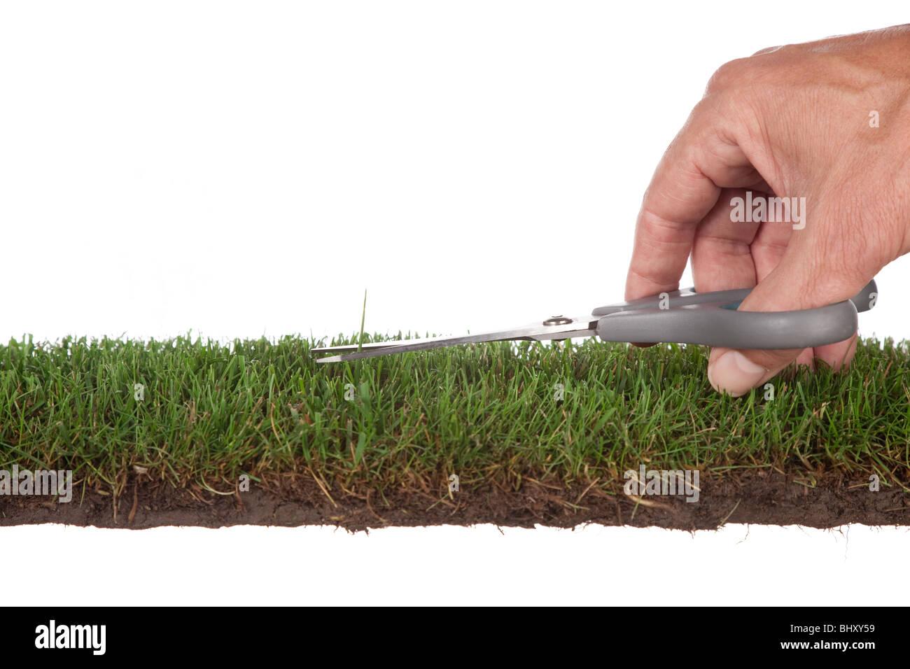 Vorbereitung der green.metaphor für Service und Perfektion Stockbild
