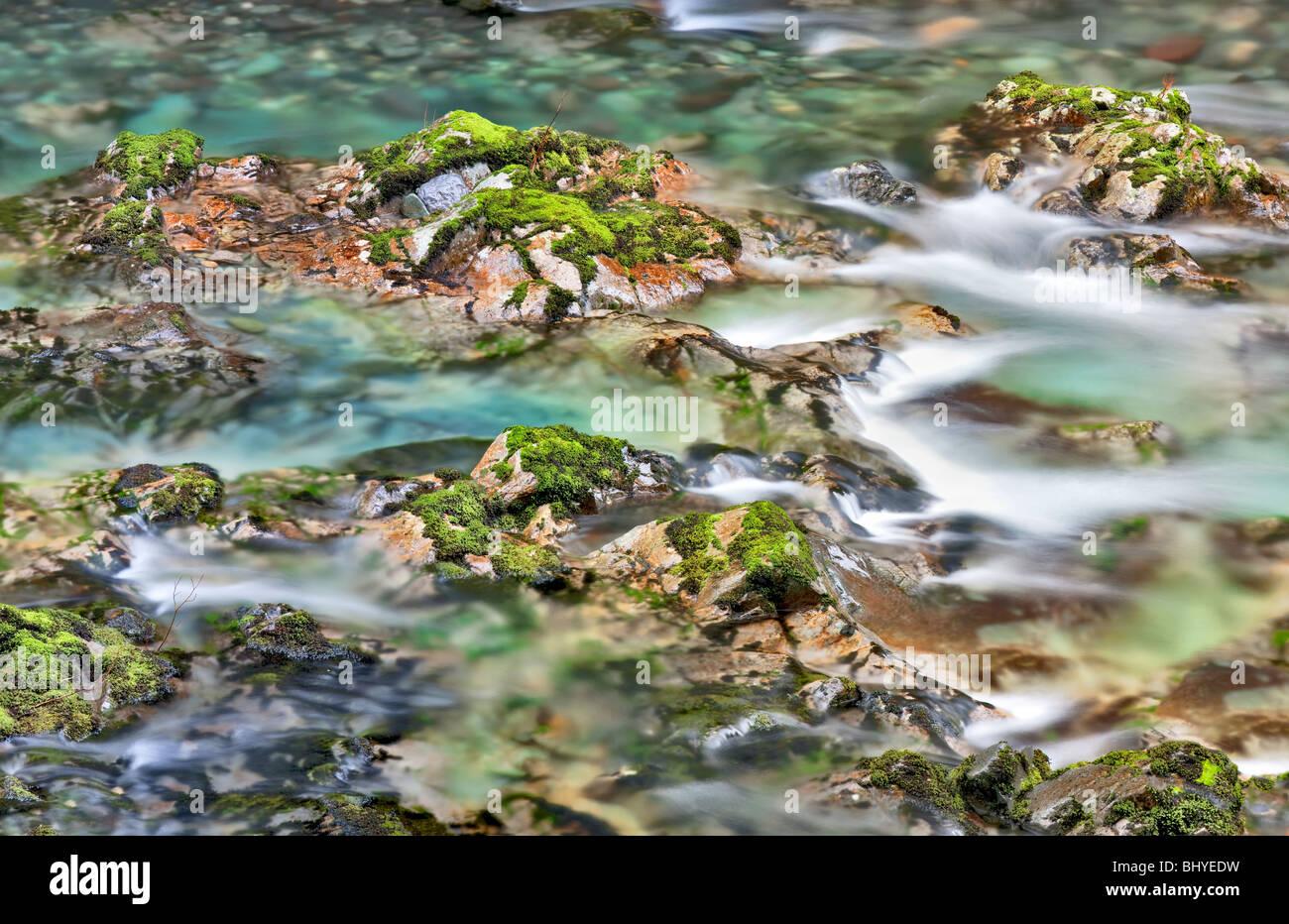 Norden Santiam Flüsschen mit bunten Felsen und Pools. Opal Creek malerische Recreation Area, Oregon Stockbild