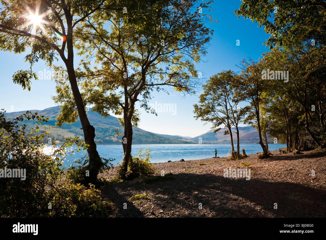 Blick auf See mit Landschaft und Berge, Loch Earn Schottland Stockbild
