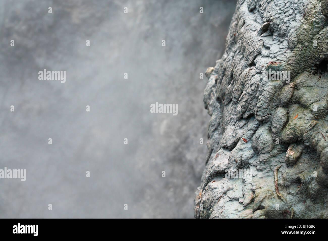 Fumarole. Furnas, Insel Sao Miguel, Azoren. Stockbild