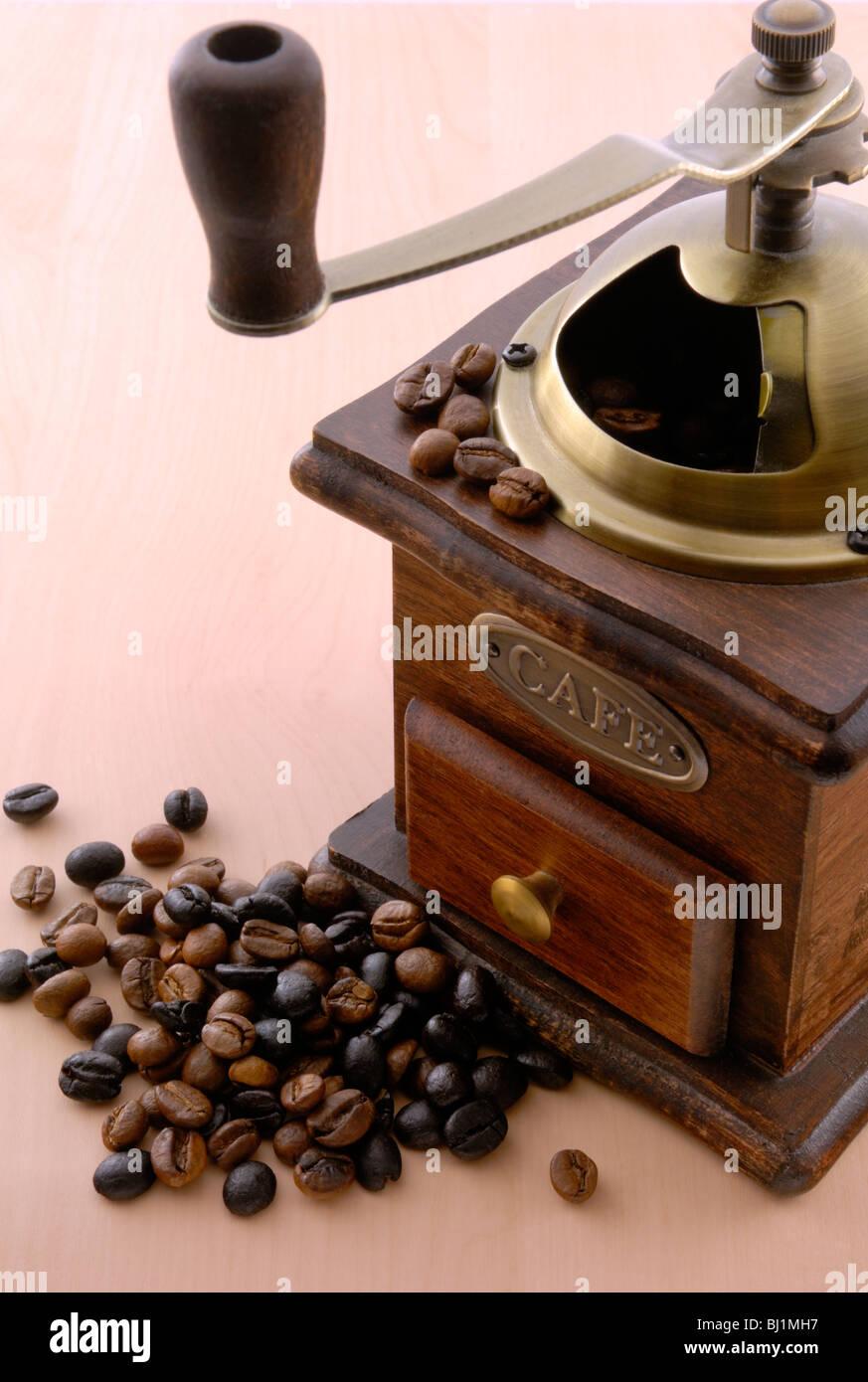 canary bean stockfotos canary bean bilder alamy. Black Bedroom Furniture Sets. Home Design Ideas