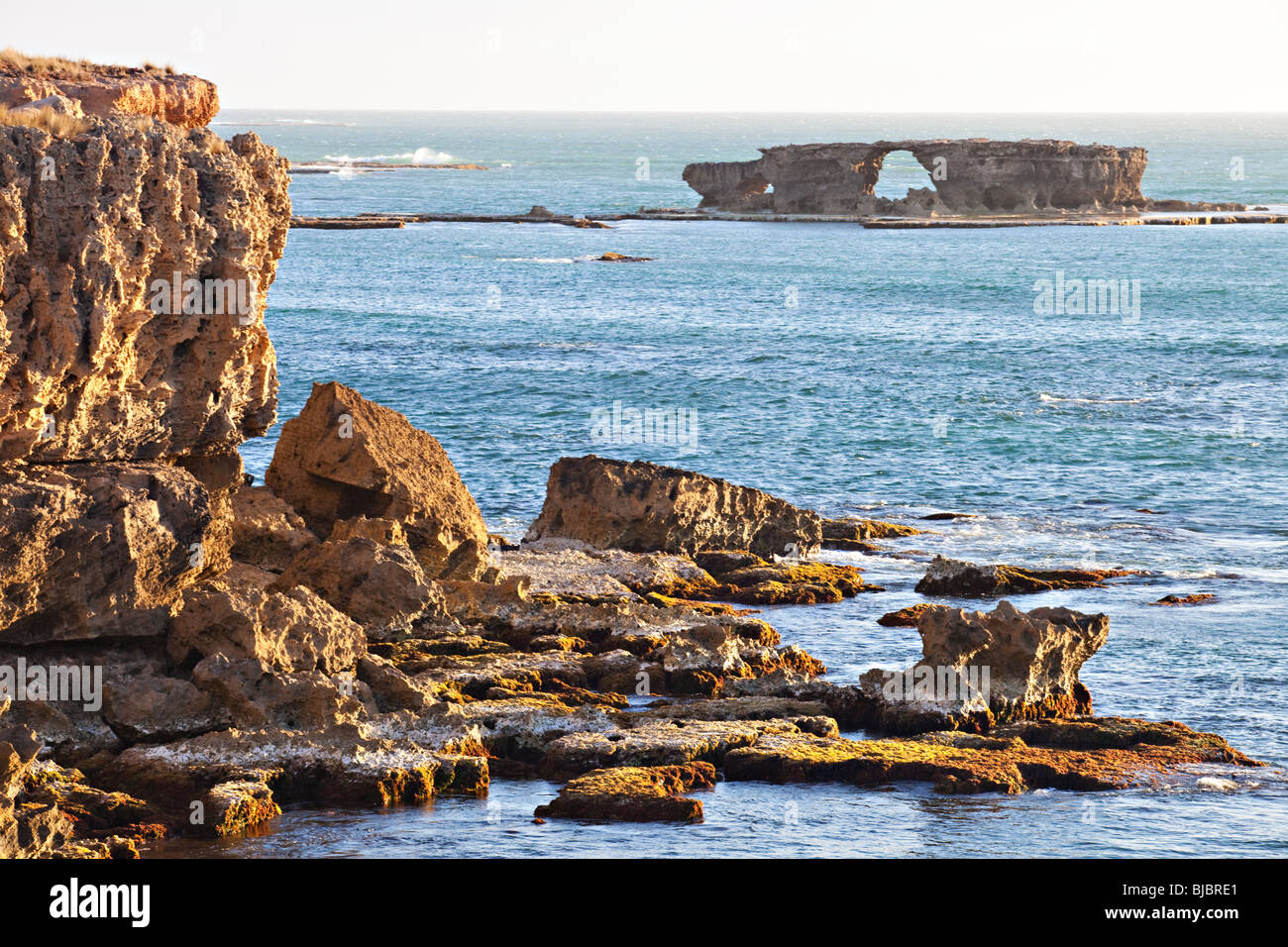 Klippen am Ozean, Robe, Süd-Australien Stockbild