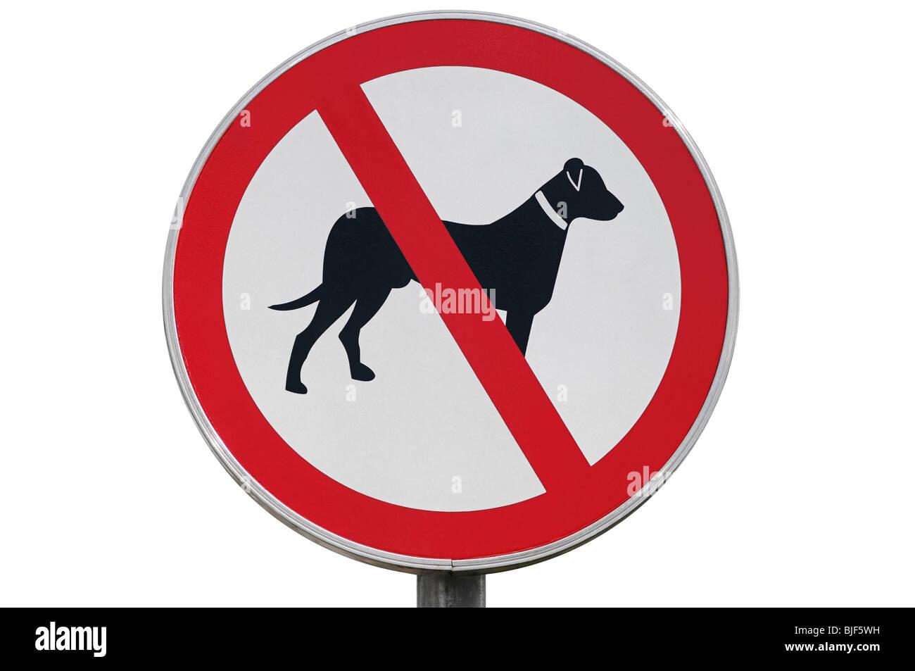 Keine Hunde erlaubt Zeichen, Nahaufnahme. Stockbild