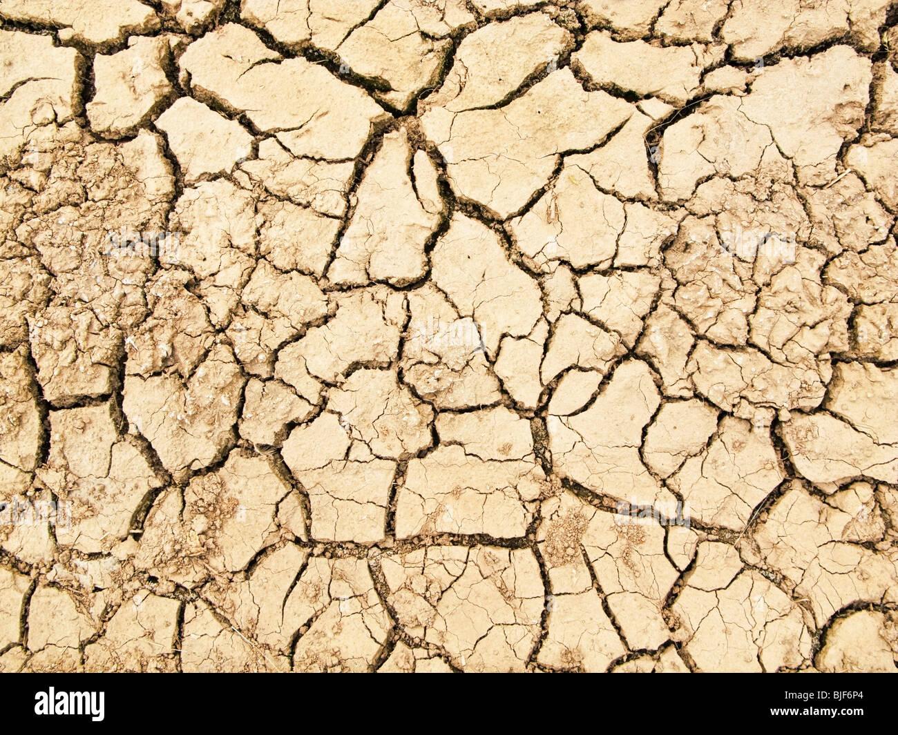 Trockener Erde rissig Stockbild