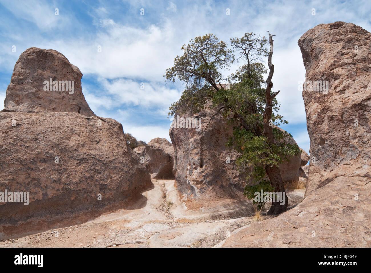 Stadt der Felsen State Park bekannt für vulkanische Felsformationen befindet sich im südwestlichen New Stockbild