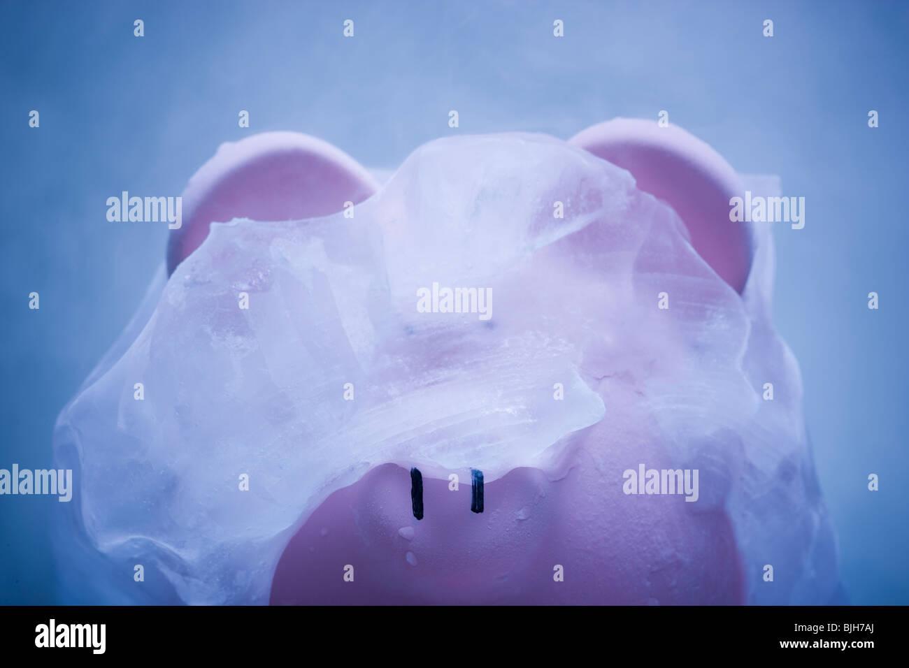 Sparschwein mit Eis bedeckt Stockbild
