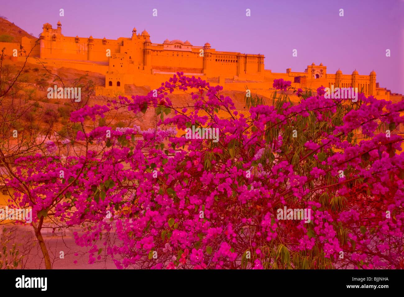 Amber Fort, Rajasthan, Indien, gegründet im Jahre 1592, in der Nähe von Jaipur Stockbild