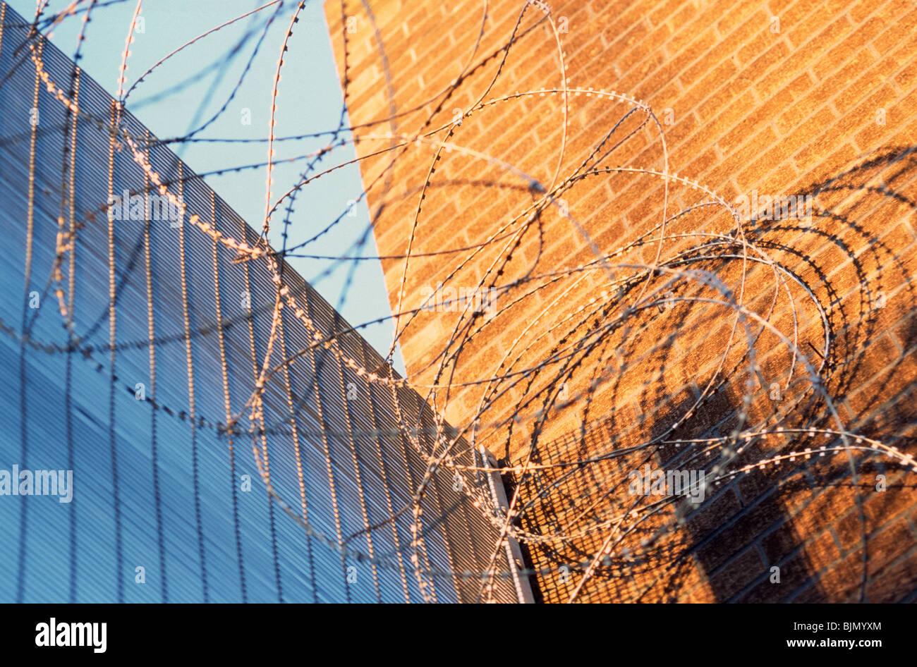 Stacheldraht auf einem Perimeter-Draht-Zaun, HM Prison Cardiff ...