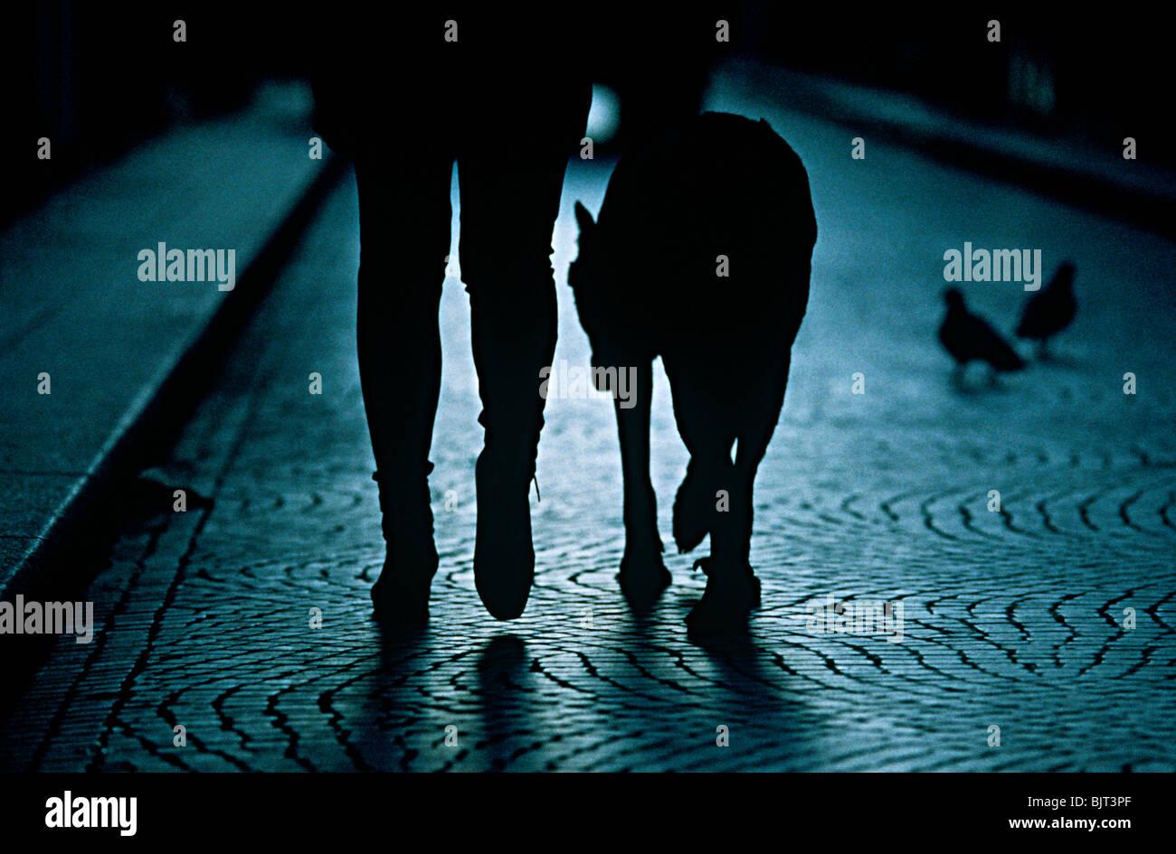 Eine Person, die ihren Hund spazieren gehen Stockbild