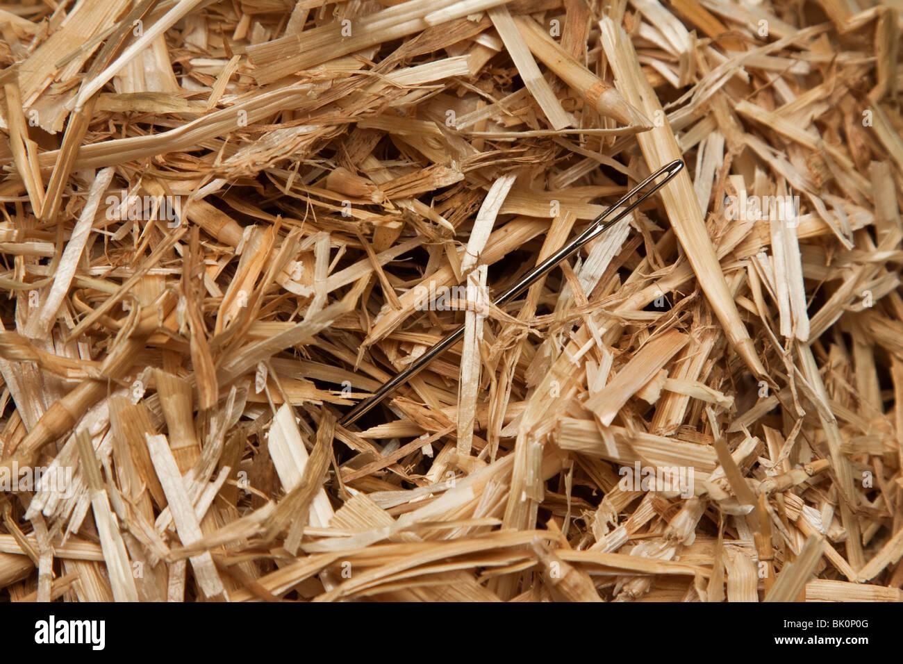 Nadel im Stroh oder Heu Stapel Stockbild