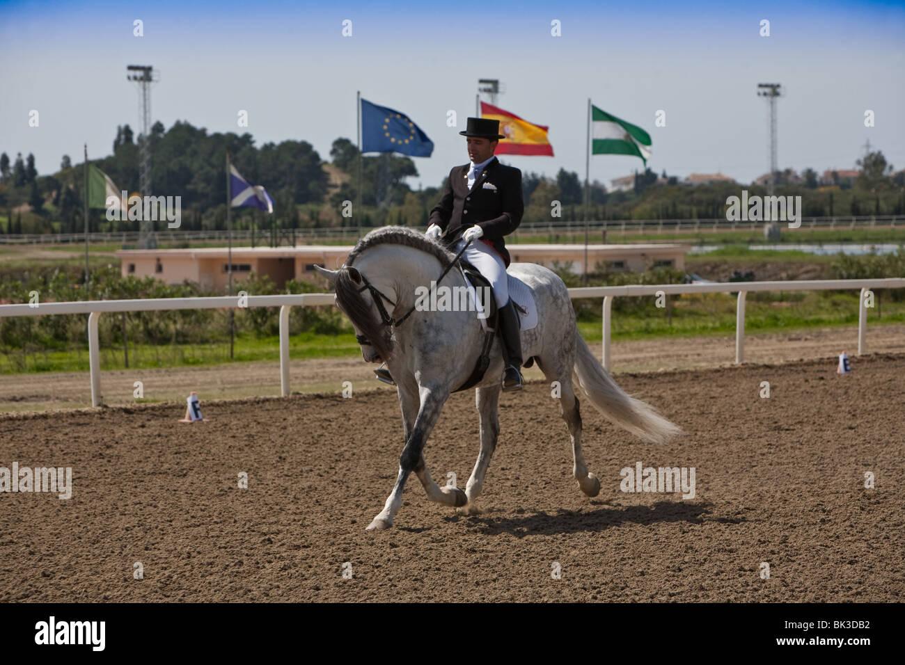 Competition morphologische, Spanien Stockbild