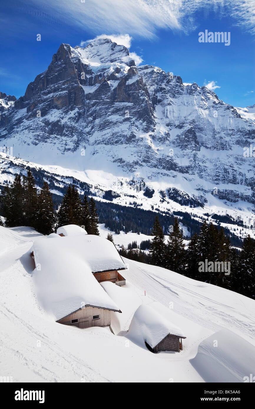 Wetterhorn Berg, 3692 m, Grindelwald, Jungfrau Region, Berner Oberland, Schweizer Alpen, die Schweiz, Europa Stockbild