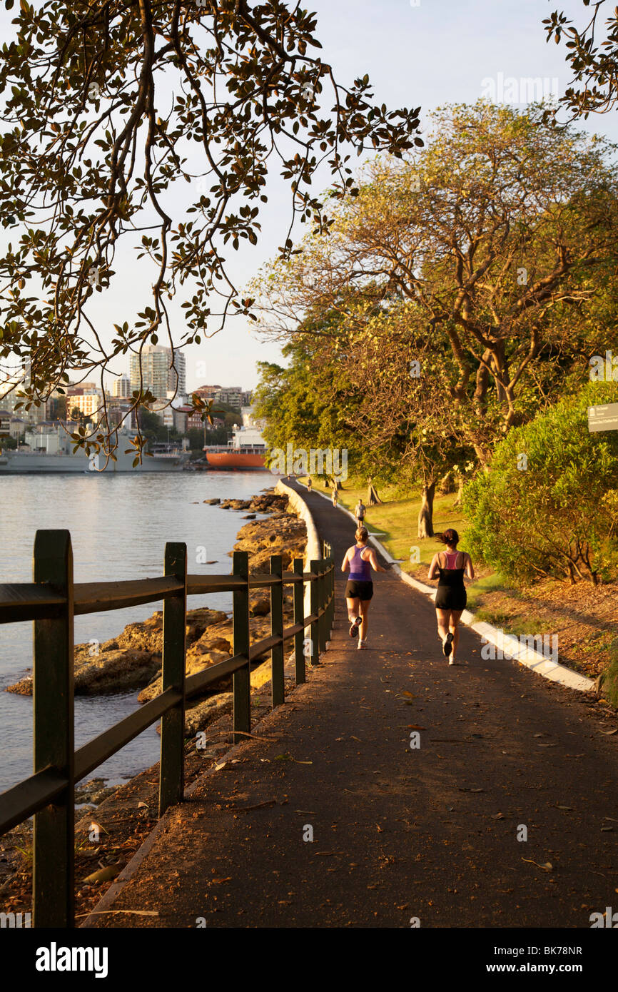 Jogger in der Domäne, Sydney Stockbild