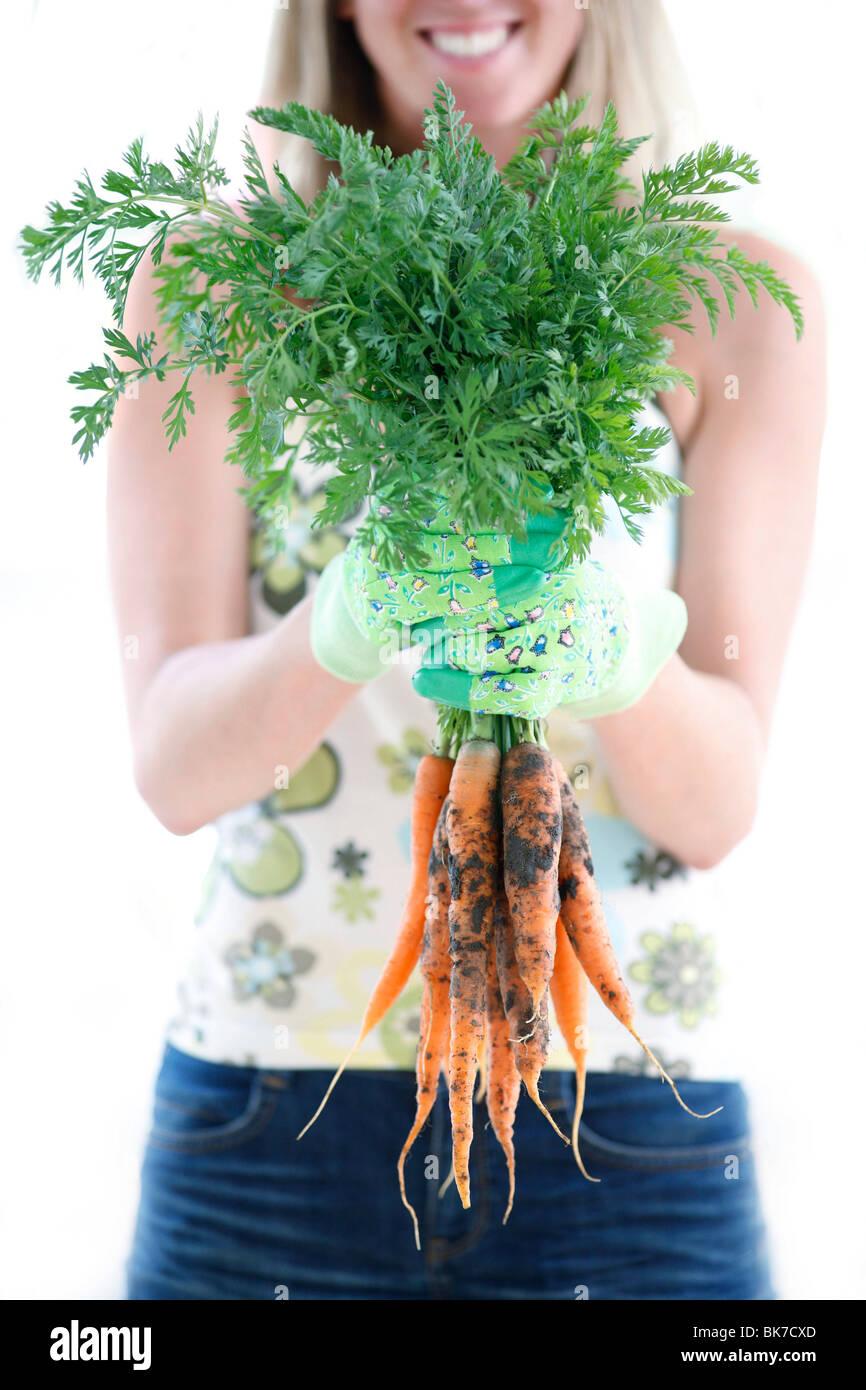 Geernteten Karotten Stockfoto