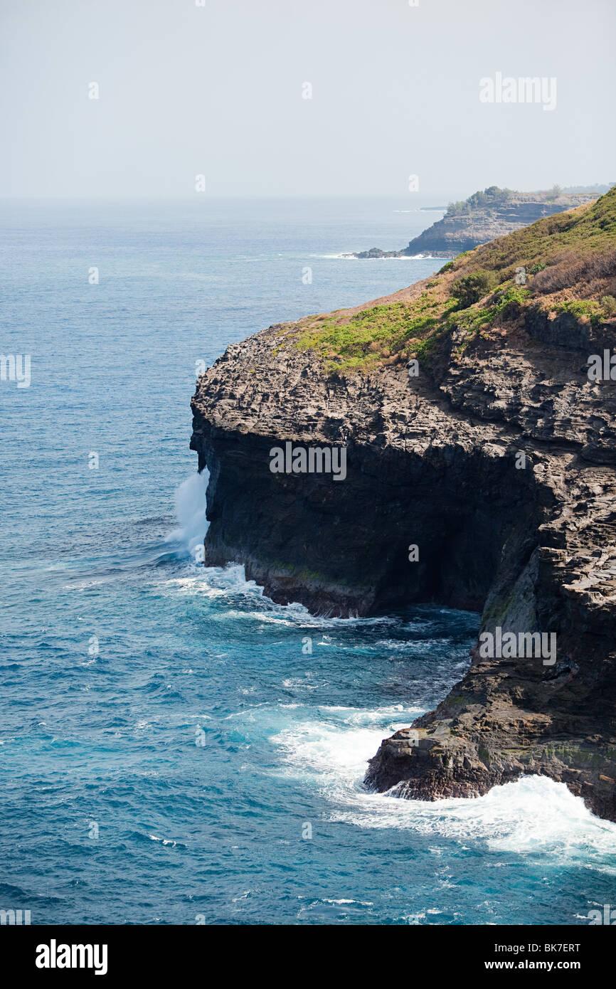 Hawaiian Küste Stockbild