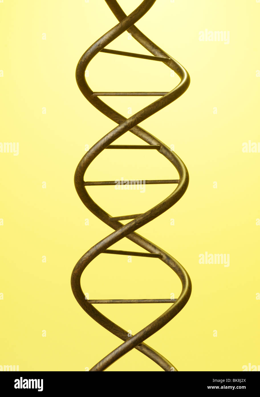 DNA-Doppelhelix Stockbild
